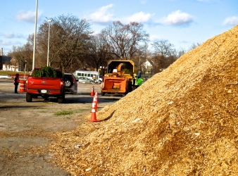 Mulchfest Success
